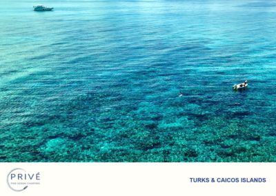 Snorkeling - We get our guests up close and personal with the World's Third Largest Barrier Reef - Pristine