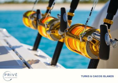 Deep Sea Fishing - Giving our guests the very best chance of success