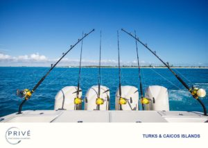 Array of deep sea sports rods set into the stern holds of Hydrasports 5300 Sports Yacht