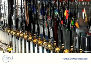 Wide array of sports fishing rods and tackle