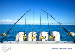 Hydrasports 53 - Outrigger fishing poles set into rod holders at the stern of the boat