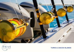 Fishing Rods lined up across the stern of Hydrasports 53 motor boat