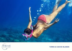 Attractive young woman free diving into blue waters in a pink and white bikini