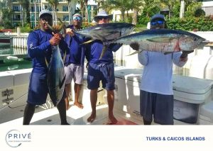 Four boat charter male crew members holding up freshly caught tuna
