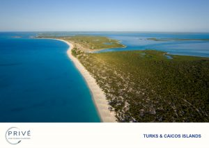 Ariel view of Pine Cay's white sand beaches and green bush